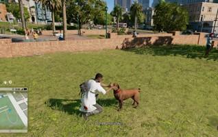 Любовь со второго взгляда. Обзор Watch Dogs 2