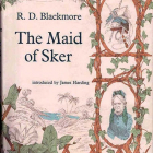 Review of Maid of Sker. Capcom, let me write it off!