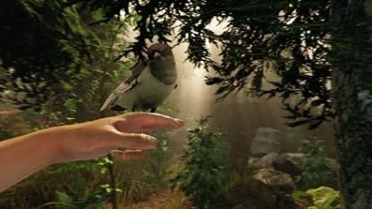The Forest: уроки выживания