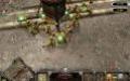 Киберспорт. Warhammer 40000: Dawn of War