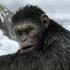 Обзор фильма «Планета обезьян: Война». Основной первобытный инстинкт