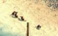 "Руководство и прохождение по ""Tropico 2: Pirate Cove"""