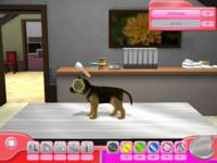 Paws & Claws Pet Vet 2