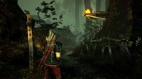 The Witcher 2: Assassins of Kings – первые впечатления