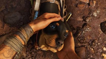 Гайд: Как получить Чоризо, двухлапого щенка на коляске, в Far Cry6