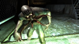 Лучшие игры за 20 лет. Год 2007: «Ведьмак», «S.T.A.L.K.E.R.: Тень Чернобыля», BioShock