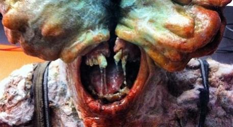 В объятиях грибницы: The Last of Us в реальности