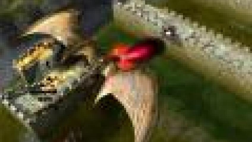 Скачать бесплатно игру стронгхолд легенд на компьютер