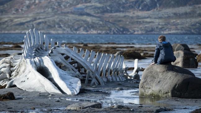 Левиафан: с копьем на чудовище морских пучин