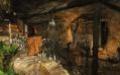 Первый взгляд. ECHO: Secrets of the Lost Cavern