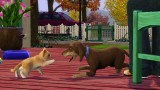 The Sims3 Pets Чит-коды #1