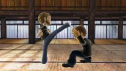 Avatar Showdown