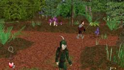 Robin Hood's Quest