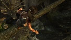 Tomb Raider (2013)