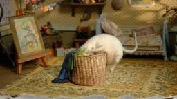 Три маленькие белые мышки. День рождения морской крысы