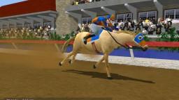 Championship Horse Trainer