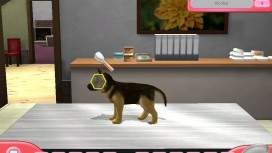 Paws & Claws Pet Vet 2: Healing Hands