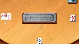 Cribbage - Crib & Peg Game