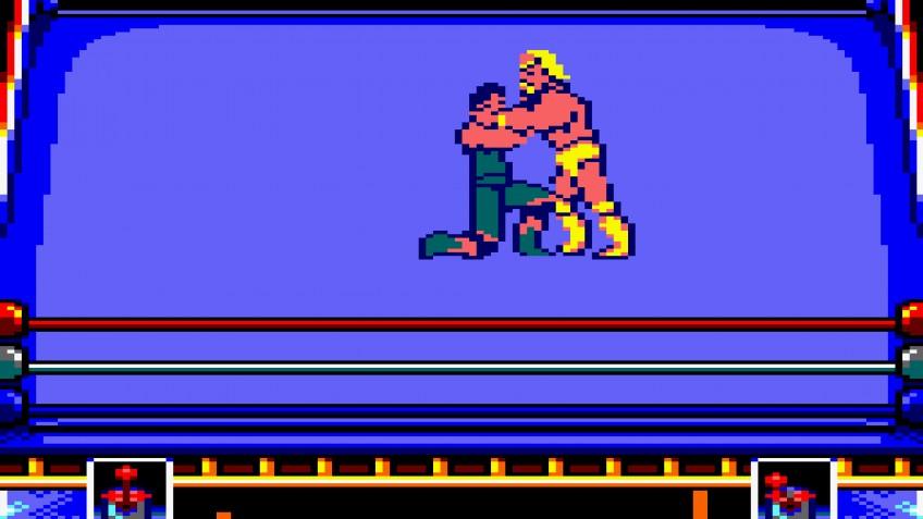 WWF WrestleMania (1991)
