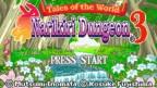 Tales of the World: Narikiri Dungeon3