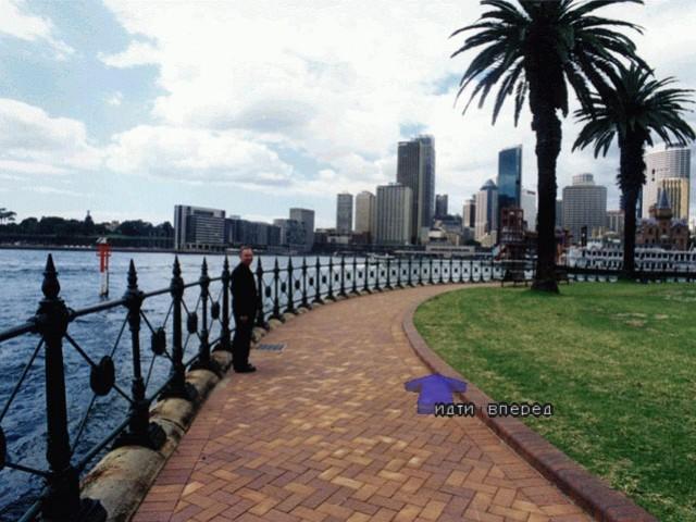 The Sydney Mystery