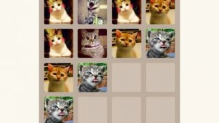2048 Cats Version
