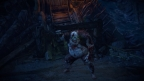 Path of Exile2