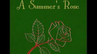 A Summer's Rose (itch)