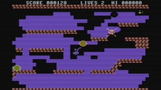 Beatnik Bert (C64) Commodore 64 (itch)