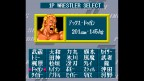 Super Fire Pro Wrestling2
