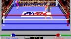 4D Sports: Boxing