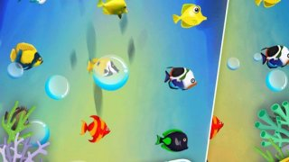 24 Games in 1 - Fish Wish Win free fishes & tanks