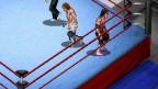 Fire Pro Wrestling G
