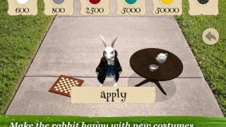 Alice in Wonderland AR quest D