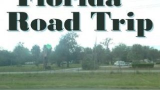 Florida Road Trip (itch)