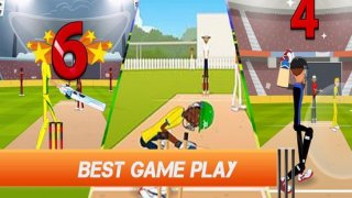 2017 Mini Cricket Mobile Adventure Game