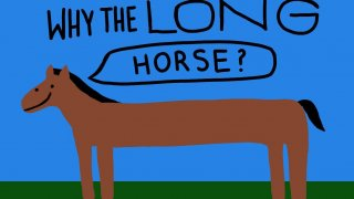 Why the Long Horse? (itch)