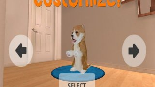 Dog Simulator HD