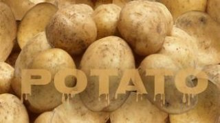 Potato Revenge (itch)