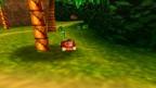 Donkey Kong64
