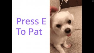 Press E To Pat (itch)