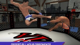 MMA Fighting 3D