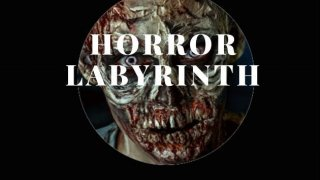 Horror Labyrinth (theropoy) (itch)