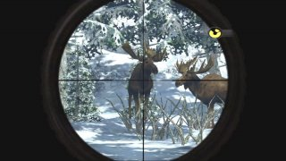 Dangerous Hunts 2009