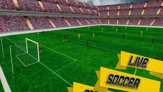 World Soccer League Football
