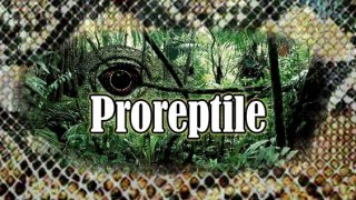 Proreptile (itch)