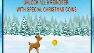 Reindeer Race and Jump agility obstacle course: Training for Christmas Day - Free