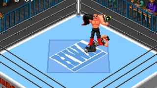 Fire Pro Wrestling Combination Tag