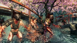 Shadow Warrior (2013)
