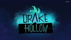 Drake Hollow